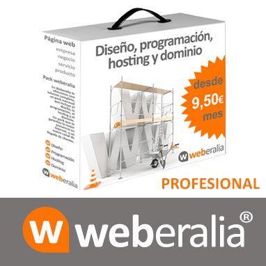 webprofesional
